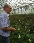 PUM Senior Expert Berry Verlaan's Training on Rose Cultivation